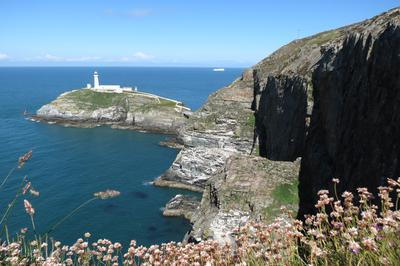 RSPB reserve South Stack